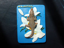 Crocodile & Giant Tortoises Park in Mauritius, Tourist Travel Souvenir 3D Resin Decorative Fridge Magnet Craft