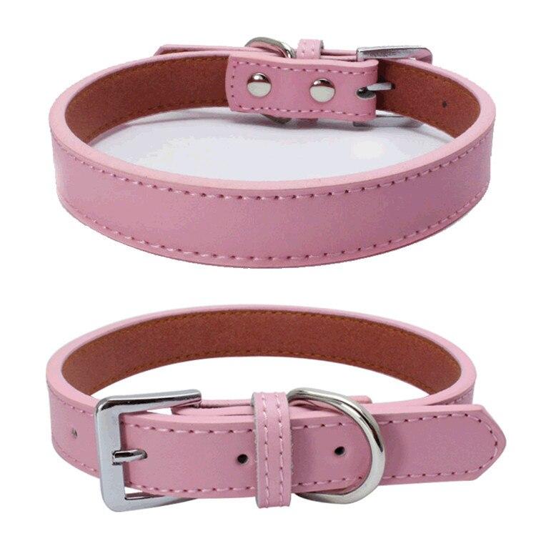 Dog Collars (5)