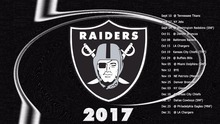 Oakland Raiders Logo Flag 3FTx5FT 100D Polyester 90x150 cm White Sleeve Sealed Double Metal Rings 541