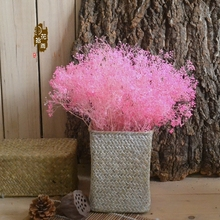 Multi-Color Mantianxing Natural Plants Dried Flowers Decorate Christmas Tree And Wedding Festival Celebration