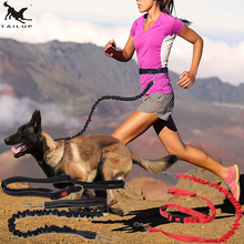 [TAILUP] Pet Dog Running Leashes Hands Freely Great for Walking ,dog leash Rope with reflective Jogging dog collars leash CL109(China)