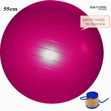 55CM  Home Exercise Workout Fitness Yoga Ball For Weight Lose Exercise Training  and Balance Exercise With Free Pump