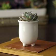 5.7x5.7x7.5cm Simple white meat more creative mini cute ceramic pots round opening three-legged pot freeshipping