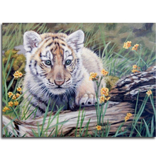 Diamond embroidery tiger picture of Diamond mosaic animal Pictures rhinestones needlework Icons hobby craft diy diamond painting