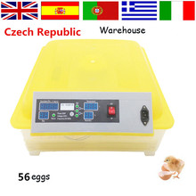 Fast Logistics and Cheap Price Mini 56 Eggs Incubator  Digital Brooder  Hatchery Machine