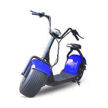 Li-Ion Battery Fat Tire Off Road Stand Up 2 Wheel Electric Scooter, Electric Motorcycle For adult use