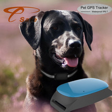 IPX-6 waterproof For Small Dog Cat Pet Gps Tracker Mini Gps Localizador via Mobile APP and website Upgrade with PU Collar(China)