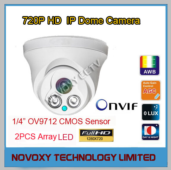 Free Shipping 1.0MP 1280X720P 2pcs Array LED HD IP IR  Dome Camera  Infrared Night Vision CCTV IP Camera<br><br>Aliexpress