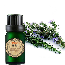 Rosemary essential oil Refreshing air fragrance lamp humidifier spice aromatherapy skin care massage plant essential oil