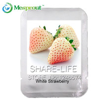 100 Pcs Rare White Strawberry seeds, New packaging Delicious Fruit and Vegetable Seeds, Four-season Bonsai Plants(China)