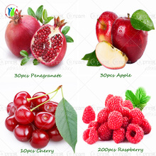 4 kind fruit,bonsai fruit tree seeds,vegetable and fruit seeds Delicious cherry. Pomegranate. Raspberry. Apple  total 100+ seeds