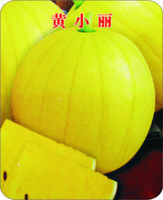 Huang Xiaoli yellow yellow soil healthy vegetable seed watermelon seed 10seeds