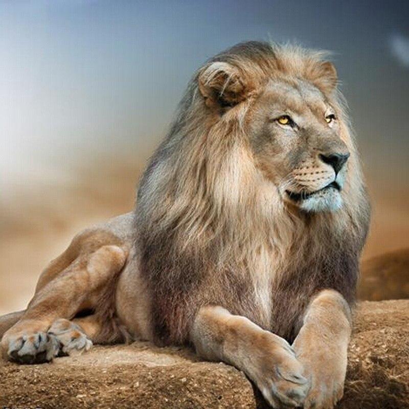 Алмаз живопись Спящего Льва полный квадрат дрель декор стены инкрустированные мозаика вышивка смолы ремесла вышивки крестом 4040 см(China (Mainland))