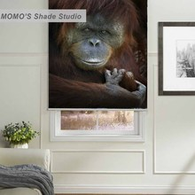 MOMO Thermal Insulated Blackout Fabric Custom Painting Monkey Window Curtains Roller Shades Blinds,PRB set582-584