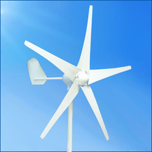 Chinese 300w 12V/24V horizontal wind energy generator for home use(China)