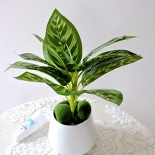 Latex 38cm 6pcs 12 Leaf Branch Artificial Plant Tree Wedding Home Church Decor No Vase Pot Green Fl5409