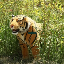 Dorimytrader 110cm Huge Simulated Forest Animal Tiger Plush Toy 43'' Large Stuffed Tiger Doll Decoration Teaching props DY60728