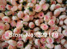 Wholesale 500X Champagne Silk Rose Heads Cheap Artificial Flower in Bulk For Wedding Arrangement Bridal Hairclips Floral Crafts