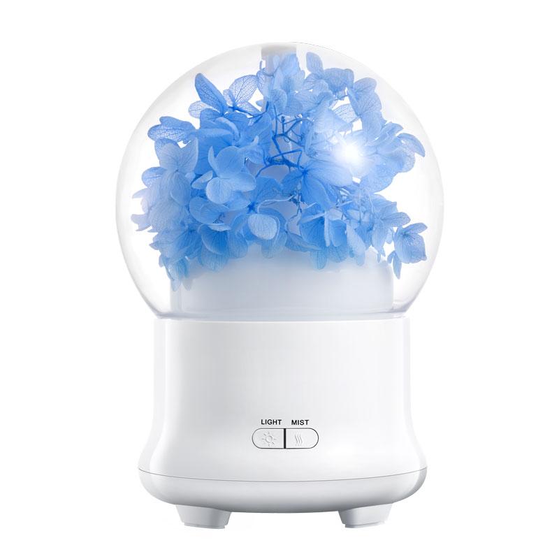 air humidifier (2)