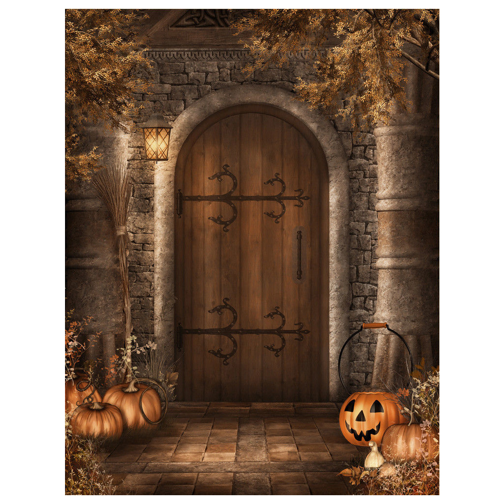 Wholesale5pcs*Halloween Vinyl Photography Backdrop Retro Door Photo Background 5x7ft<br>