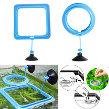 Fish Feeding Square ROUND Aquarium Fish Tank Ring Feeder Station Floating Food Water Plant Buoyancy Circle Accessory Sucker Cup(China)