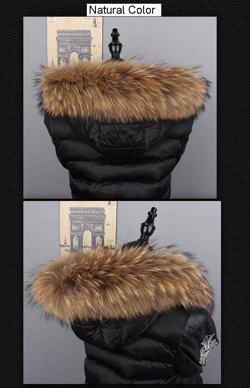 raccoon collar details 1 1