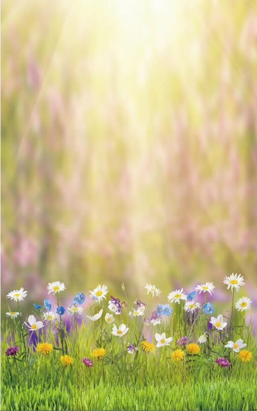 4X6ft(1.25x2m) Spring Theme Easter Photo Studio Flower Photography Background Backdrop Printed With Sunshine And Grass D-9573<br><br>Aliexpress