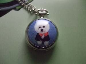 Pocket Watch Necklac...