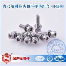 Factory Direct Sales Stainless Steel Hexagon Socket Head Cap Screw, Single Coil Spring Lock Washer and Plain Washer assemblies