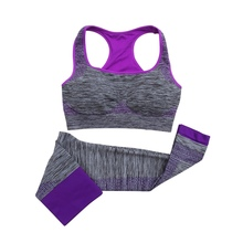 2 Pcs Women Yoga Sets Running Fitness Seamless Sport Bra Vest+Pants Leggings Set Gym Workout Sports Wear