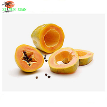 Improve Skin Pawpaw Fruit Extract Powder from GMP Supplier 200g/lot
