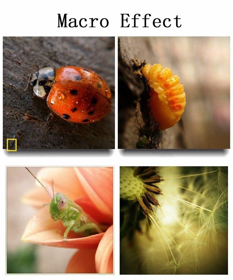 12in1 Camera Lens Kits 8x Zoom Telephoto Lentes Fisheye Wide Angle Macro Lens For iPhone 5 5C 5S SE 6 6S 7 Plus 8 X Phone Lenses 24