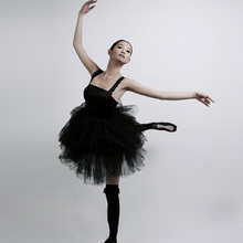 High Quality Women Ballet Skirt Dance Clother Ballet Fashion Sexy Black Swan Mesh Costume Dance Short Skirt Asian/Tag Size S-2XL(China)
