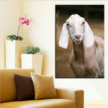 Large size Printing Oil Painting White Big ears sheep Wall painting POP Art Wall Art Picture For Living Room painting No Frame(China)