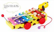 BOHS Glockenspiel Educational Music Colour Learning Wooden Dog Drag Xylophone  Piano  Pull Toys