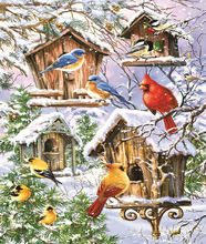 ZOYA 100% DIY Diamond Mosaic Snow, Bird House Handmade Diamond Painting Cross Stitch Set Diamond Embroidery Pattern Rhinestone A(China)
