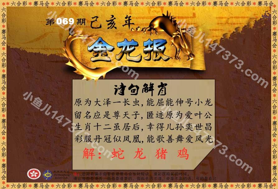 HTB1VsEIb7xz61VjSZFrq6xeLFXaH.jpg (893×609)