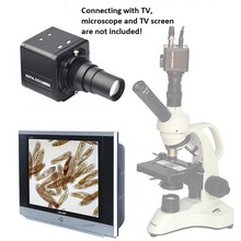 USB Microscope Electronic Eyepiece Digital CCD Camera Connecting with TV Computer Machine for Aquaculture(China)