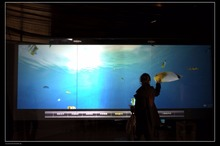 "21.5"" front and Rear Projection holographic Screen Film/ window display rear transparent hologram projector screen"