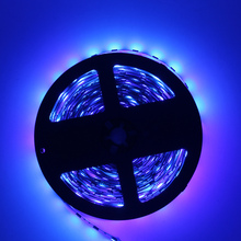 Special Offer blue color USD2.99 buy 5meter LED strip with DC plug SMD3528 Non-waterproof 300 led/tape 60led/meter free shipping