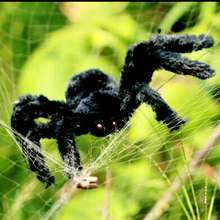 Halloween Black Large Spider Haunted House Prop Indoor Outdoor Giant Halloween Spider Decorations for Home Party Props