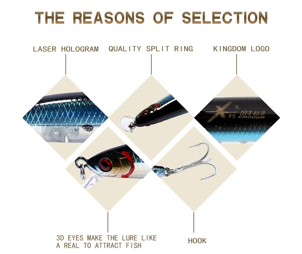 Kingdom Fishing lure 3