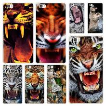 Tiger Angry tigers White Coque Shell Case Cover Phone Cases for Huawei P7 P8 P9 P10 Lite Mate s 7 8 9