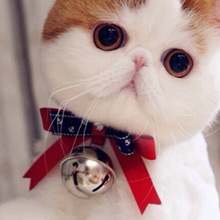 Cute Leather Satin Bowknot Collar Bow Tie with Big Bell for Cats Personalized Hand Made Cat Collar