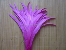Rooster feather Rose DIY feather clothing jewelry accessories / wedding Party supplies performance necessary