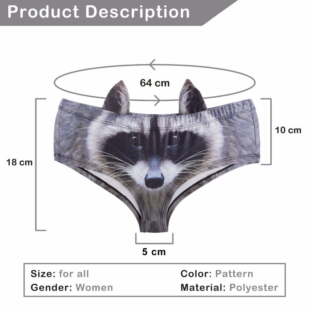 41071 raccoon (1)