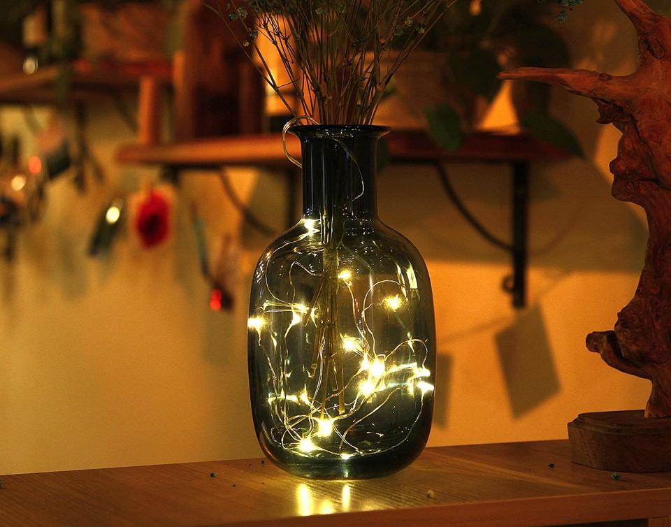Holiday string lights (19)