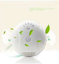 Free Shipping Ozone Generator Air Purifier Disinfectant Machine Air Cleaner(China)