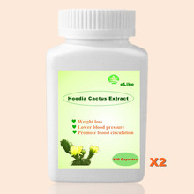 2 Bottles Nature Hoodia Cactus Extract burn fat Pure Hoodia gordonii extracts(China)