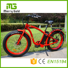Powerful electric bicycle fat tire electric bike with lithium battery 48v 750w china e bike for adult(China)